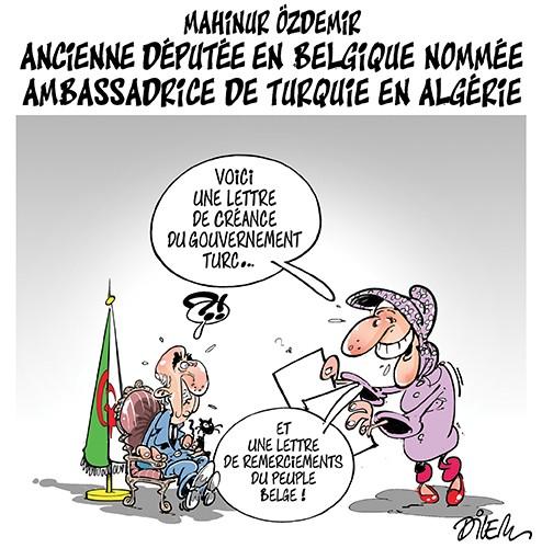 Mahinur Ozdemir, ancienne députée en Belgique nommée ambassadrice de Turquie en Algérie - Dilem - Liberté - Gagdz.com