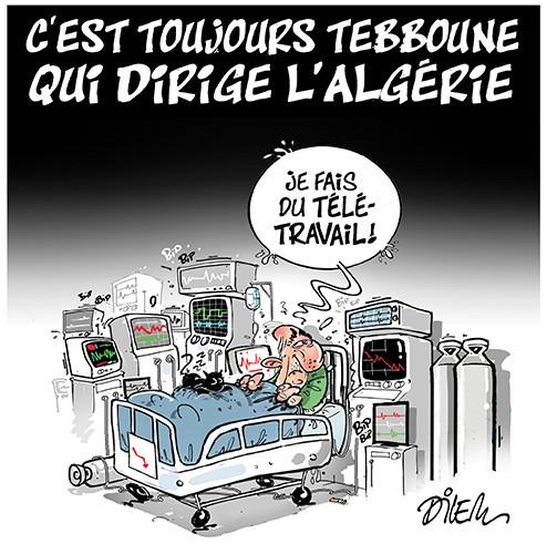 C'est toujours Tebboune qui dirige l'Algérie - Dilem - Liberté - Gagdz.com